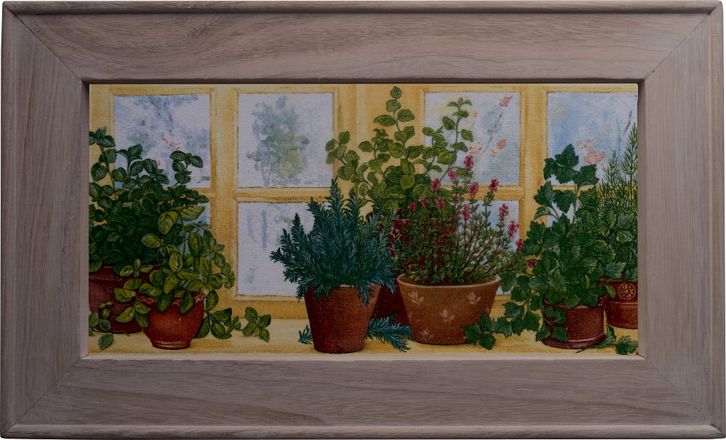 Kräutertöpfe auf der Fensterbank